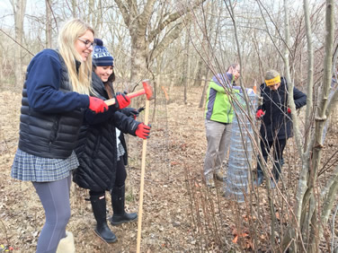 Volunteering as Wood Warriors at Little Seneca Creek Park